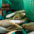 Fresh fishes in basket — Stock Photo #36031351