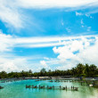 Shrimp farms — Stockfoto #37335947