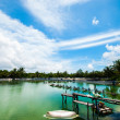 Stockfoto: Shrimp farms