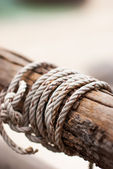 Ropes tied to wooden pole — Foto Stock
