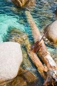 Rusty anchor at the rocks — Stock Photo