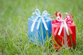 Roten und blauen geschenkbox auf dem gras-feld — Stockfoto