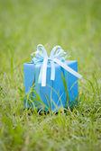 Blau geschenk-box auf dem gras-feld — Stockfoto