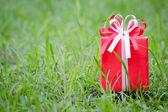 Roten geschenk-box auf dem gras-feld — Stockfoto