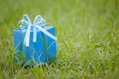 Blue gift box on the grass field — Stock Photo