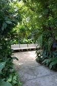 在公园的长椅 — 图库照片