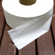 Paper towel Toilet roll — Stock Photo #31651481