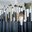 Old makeup brushes in holde — Stock Photo #31661455