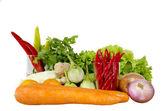 隔离在白色背景上的新鲜混合蔬菜 — 图库照片