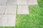 Trädgårdsgången med gräs växer upp stenarna — Stockfoto