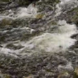 Hilton Falls Waterfall River Closeup 00184 — Stock Video