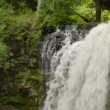 Stock Video: Hilton Falls Waterfall Medium Top 00180