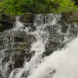 Hilton Falls Waterfall Closeup Top 00179 — Stock Video