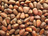 Nuts — Foto de Stock