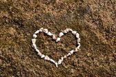 Srdce korálů — Stock fotografie