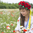 Little girl in Ukrainian national costume collect wild flowers — Stock Photo #48741065