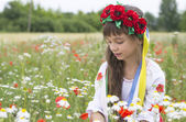 Little girl in Ukrainian national costume collect wild flowers — Stock Photo