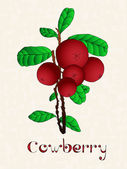 Lingonberry or cowberry (Vaccinium vitis idaea). Cranberries with green leaves over art grunge background. — Stock Photo