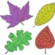 Collection beautiful colorful autumn leaves isolated on white. Set of four colored leaves. — Stock Vector