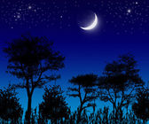 Trees , moon and stars. — Stock Photo