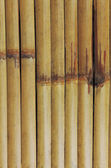 Old bamboo texture. — Stock Photo