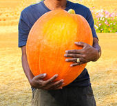 A man holding the big pumpkin. — Foto de Stock