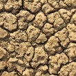Cracked by the heat long lifeless soil — Stock Photo #27413829