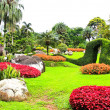 Stock Photo: Mae Fah Luang Garden,locate on Doi Tung,Thailand