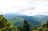 Morning Mist at Tropical Mountain Range, Chiangrai,Thailand — Stock Photo