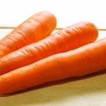 Carrot fresh vegetable group — Stock Photo