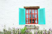Dekoratif vintage pencere renkli bitkiler. — Stok fotoğraf