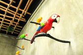 Bird sculpture colorful on wall — Stock Photo