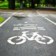 Stock Photo: Bicycle Lanes in Park