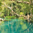 Blue Lagoon in Vang Vieng, Laos. Travel destination with clear w — Stock Photo #41110495