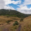 Horton Plains — Stock Photo #28655437