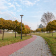 Foto Stock: Alley in a park in autumn.