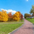 Beautiful park alley in autumn — Stock Photo #33588823