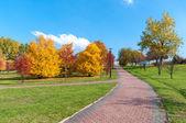 Krásný park alej na podzim — Stock fotografie