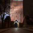Opatowska gate by night — Stock Photo