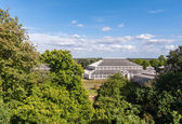 Temperate House in Kew Gardens — Stock Photo