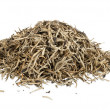 Stock Photo: Heap of golden ceylon teleaves