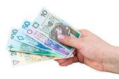 Hand holding polish banknotes — Stock Photo