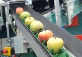 苹果皮带输送机 — 图库照片