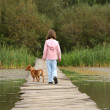 Girl and dog walk — Stock Photo