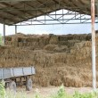 Straw storage — Stock Photo