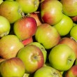 Idared apples — Stockfoto #28894363