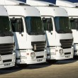 White trucks parked — Stock Photo #29999765