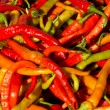 Chili peppers — Foto Stock