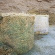 Stock Photo: Haylage and silage