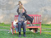 Man with cat and dogs — Stock Photo
